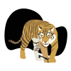tigre33